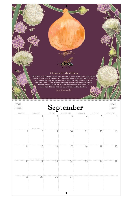 2020 Farmer's Market Native Pollinators Calendar — Rigel Stuhmiller with regard to Uc Berkeley 2020 Calendar