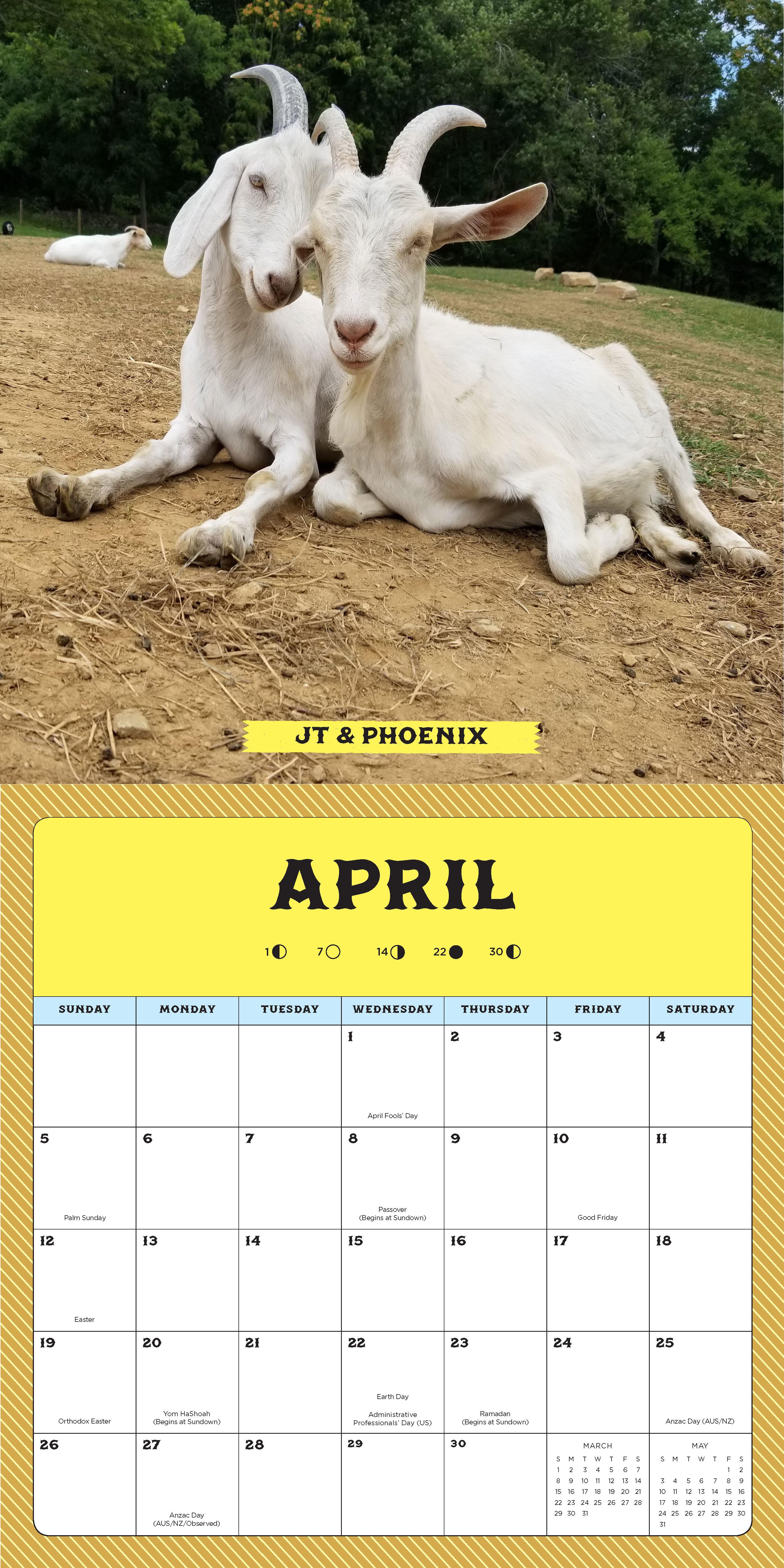 Animals 16 Month Calendar September 2019 Through December throughout September Thru December 2020 Calendar