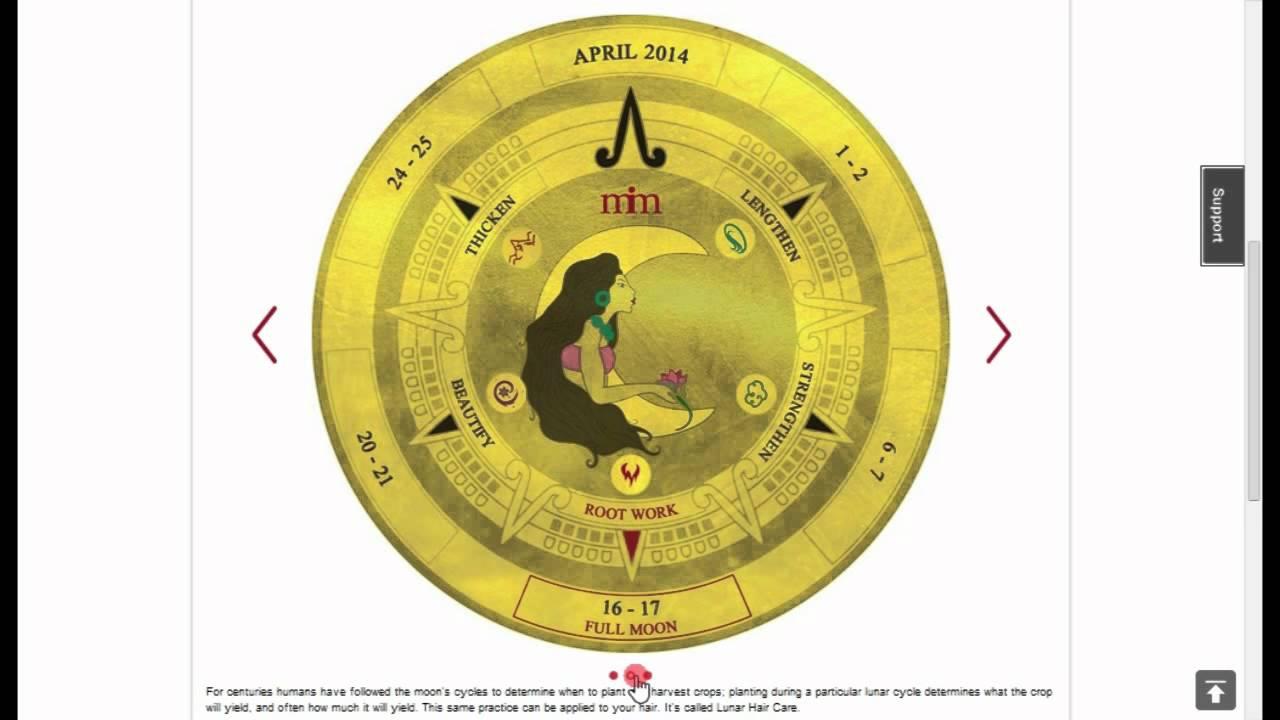 Anthony Morrocco Lunar Hair Chart  Bobi.karikaturize in Lunar Hair Chart