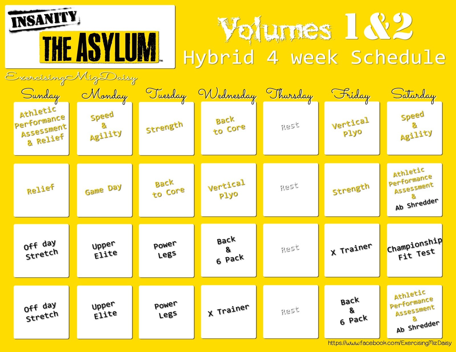 Blogging Miz Daisy: Insanity Asylum Review within 21 Day Fix Hybrid Calendar