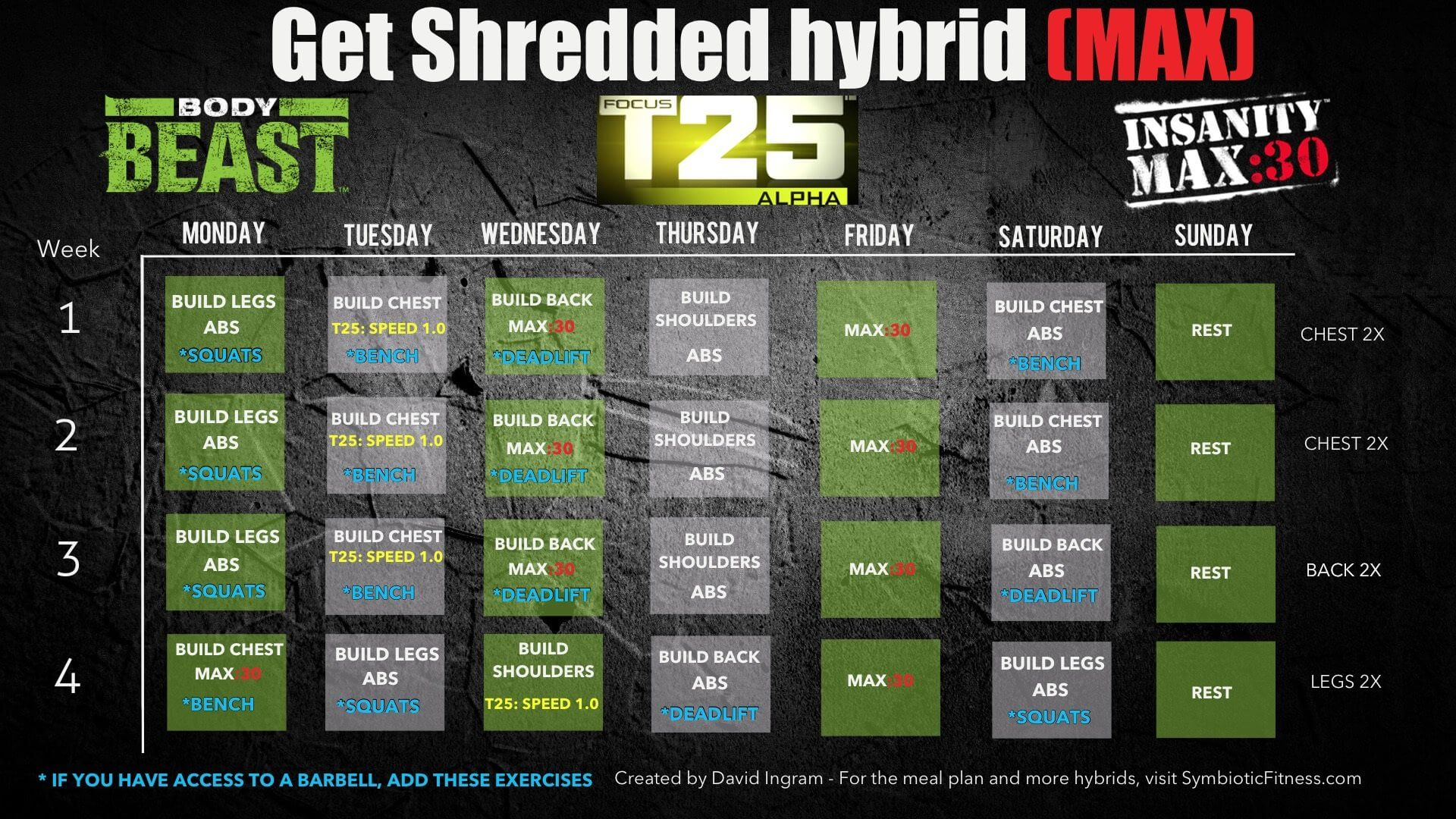 Bodybeast Hybrid With Insanity Max 30 And T25  Get Shredded within Insanity Max 30 Body Beast Hybrid