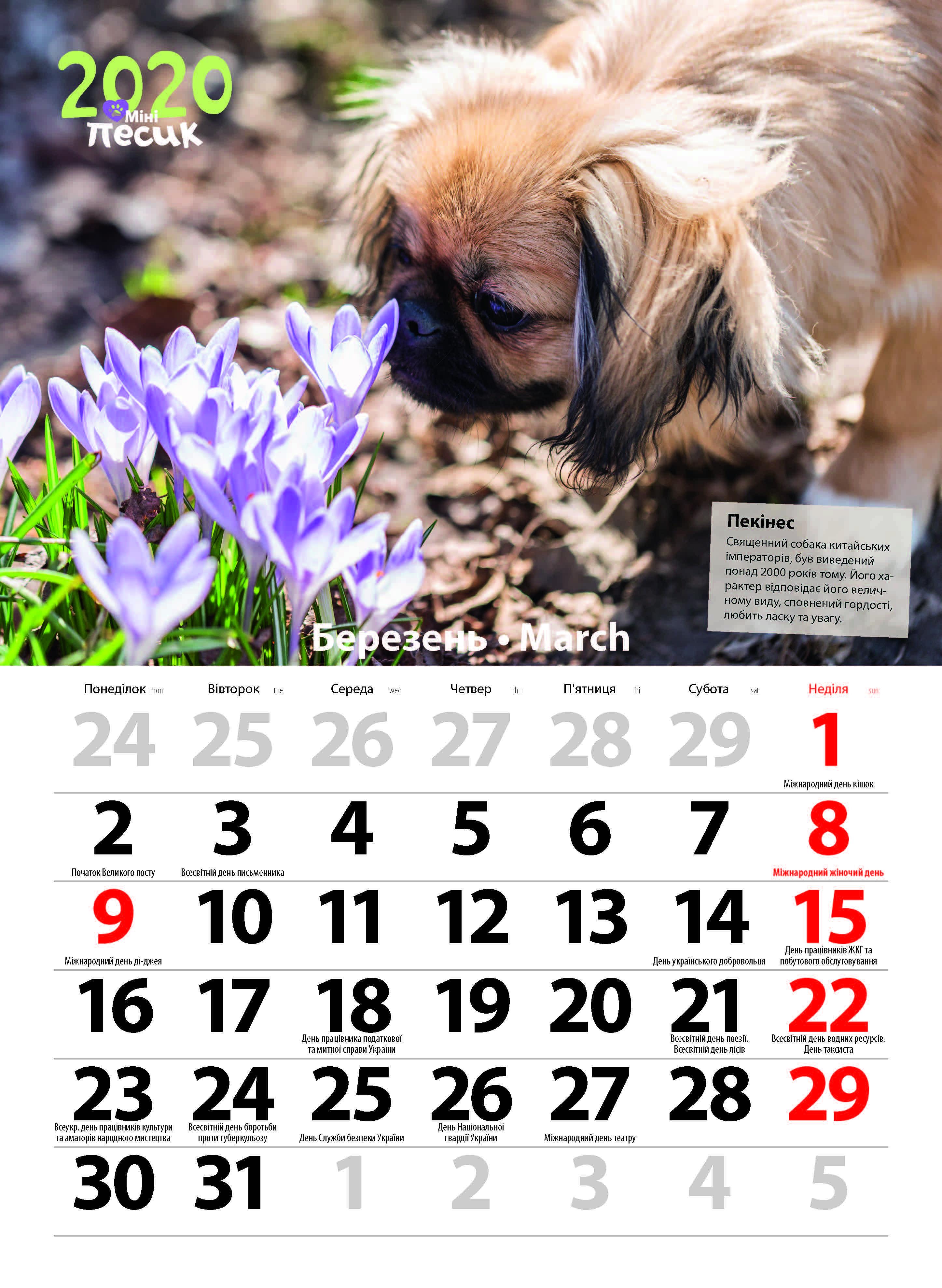 """Календар """"мініпесик"""" 2020 with Kalendar Kuda March 2020"""
