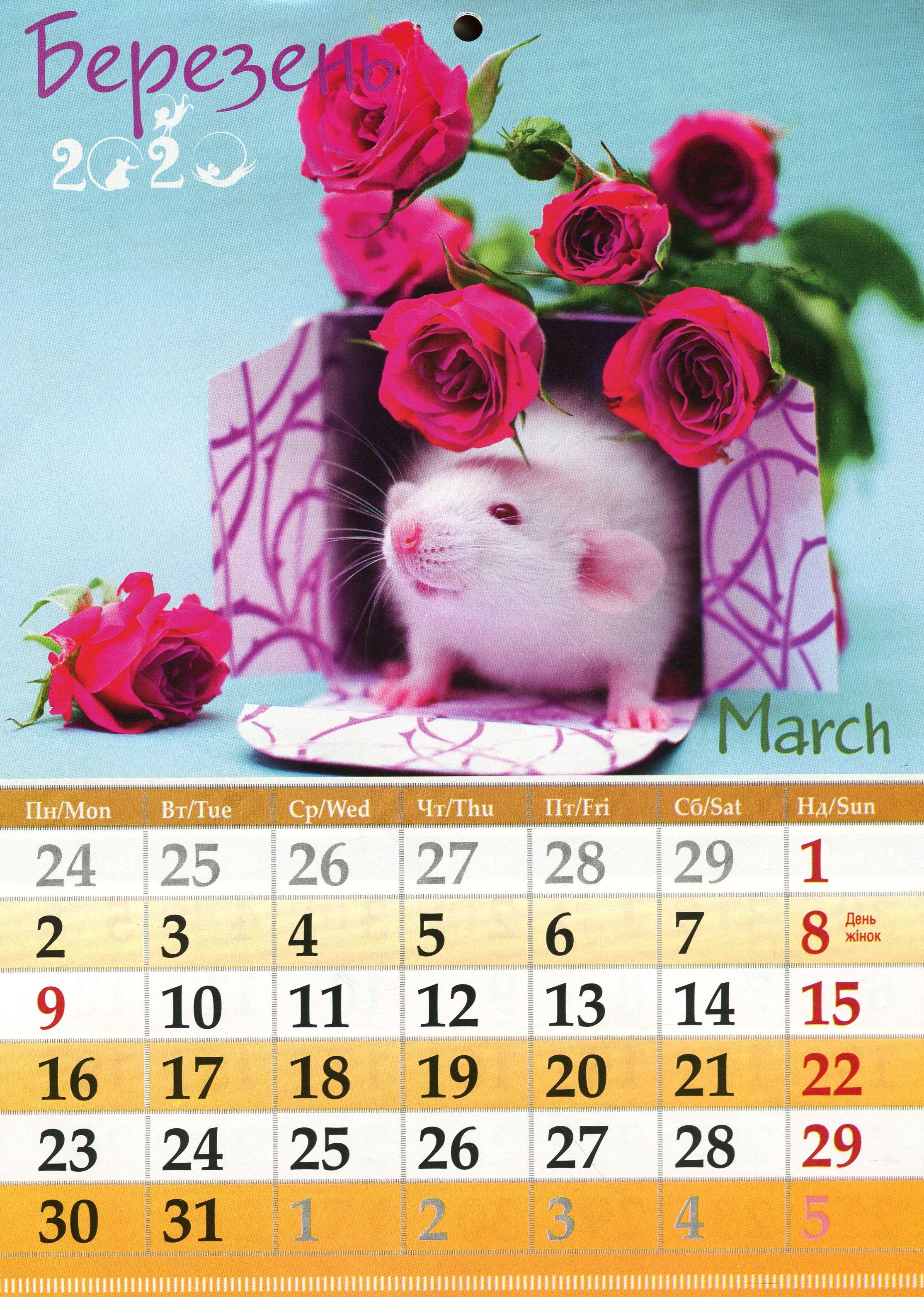 Календар На 2020. Світовид Міні. Мишканорушка inside Kalendar Kuda March 2020