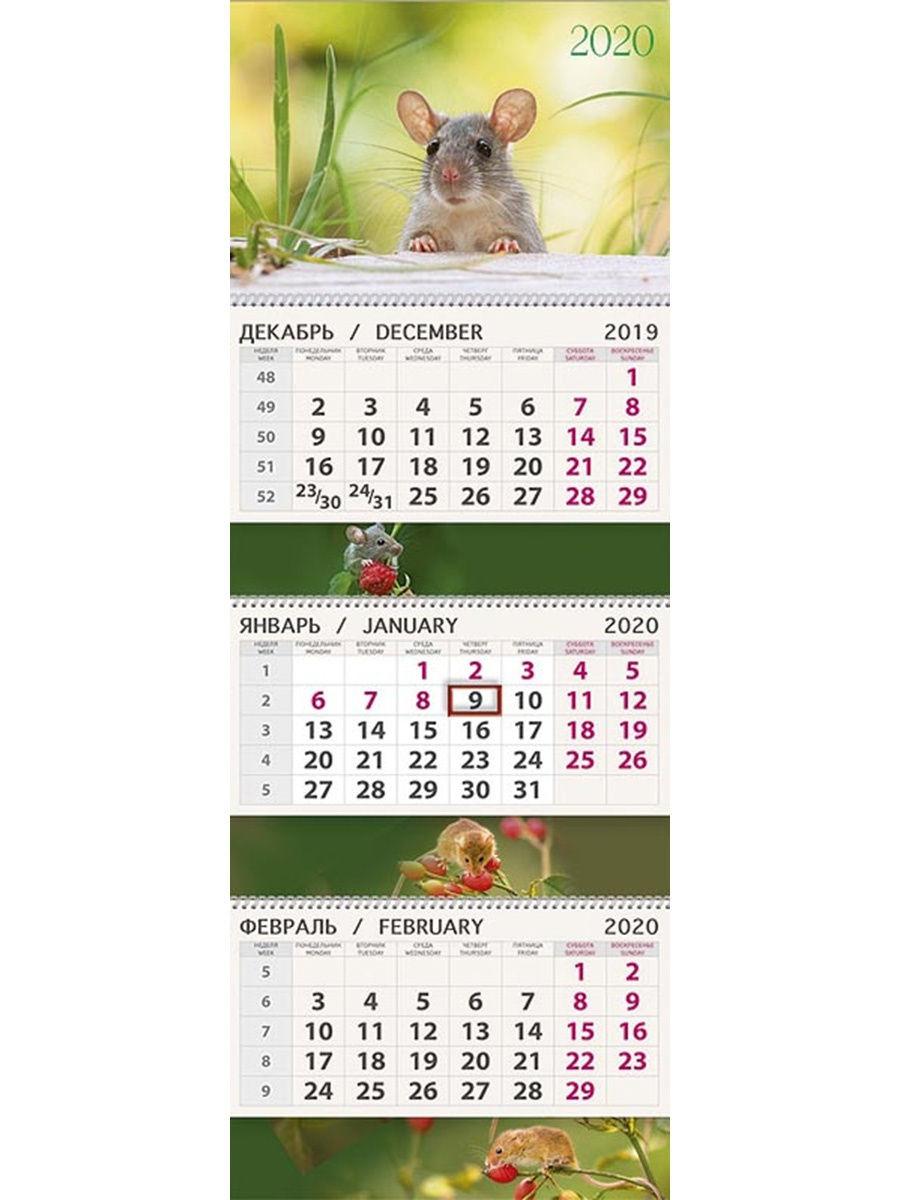 Календарь Арт Дизайн Квартальный Природа И Мышь 2020, Арт Дизайн with regard to Emoji Blitz Calendar 2020