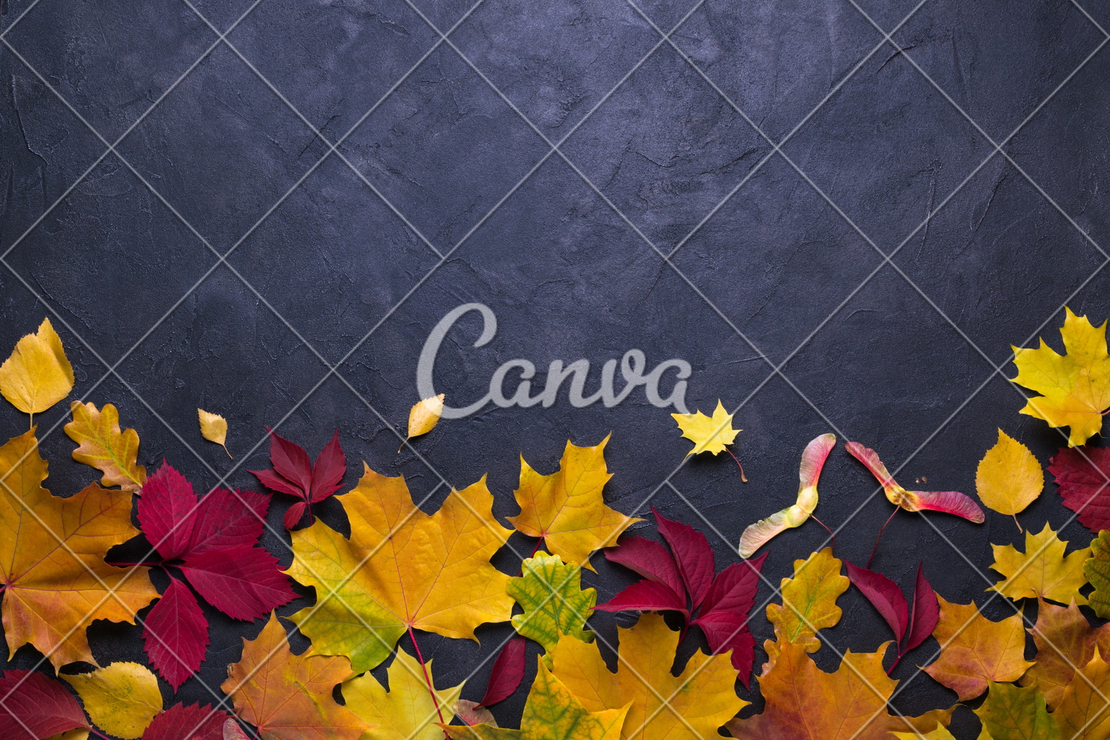 Frame With Autumn Maple Leaves. Nature Fall Template For with Canva Ticket Template