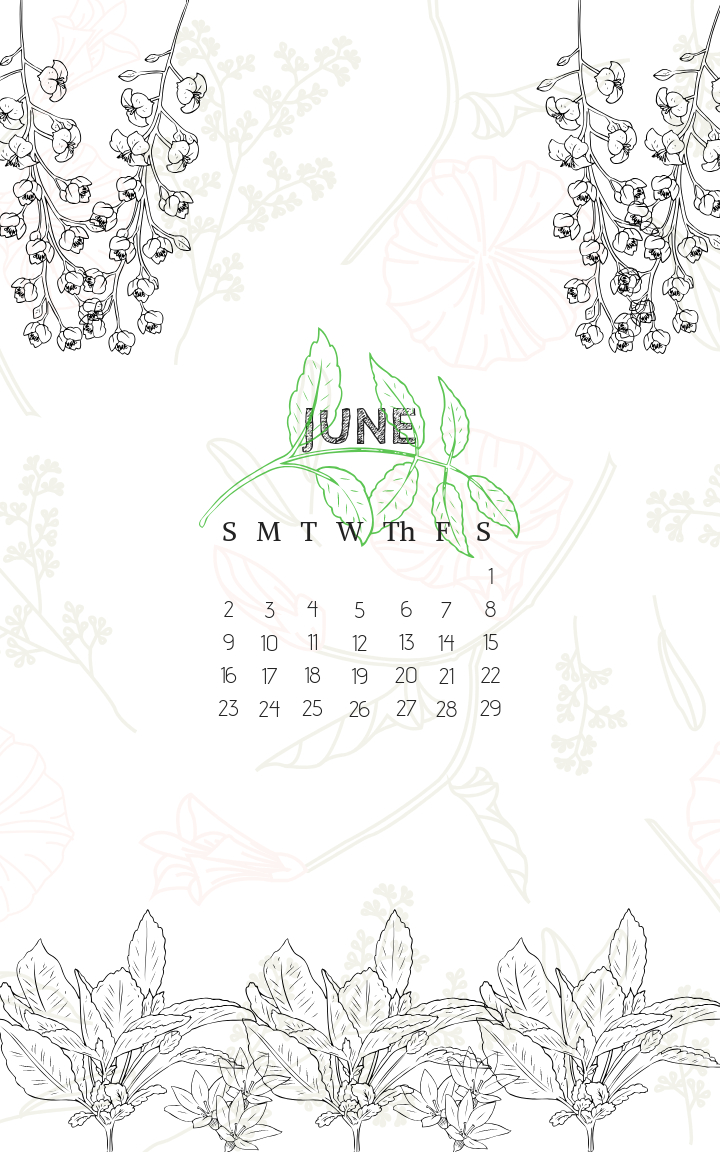 June 2019 Iphone Lock Screen Background Wallpaper Calendar with regard to Iphone Lock Screen Calendar