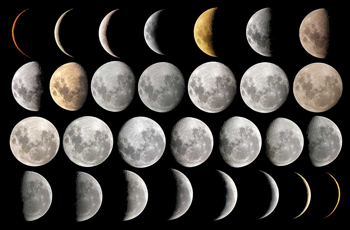 Lunar Hair Chart For Skeptics  Morrocco Method inside Anthony Morrocco Lunar Hair Cutting Chart 2020