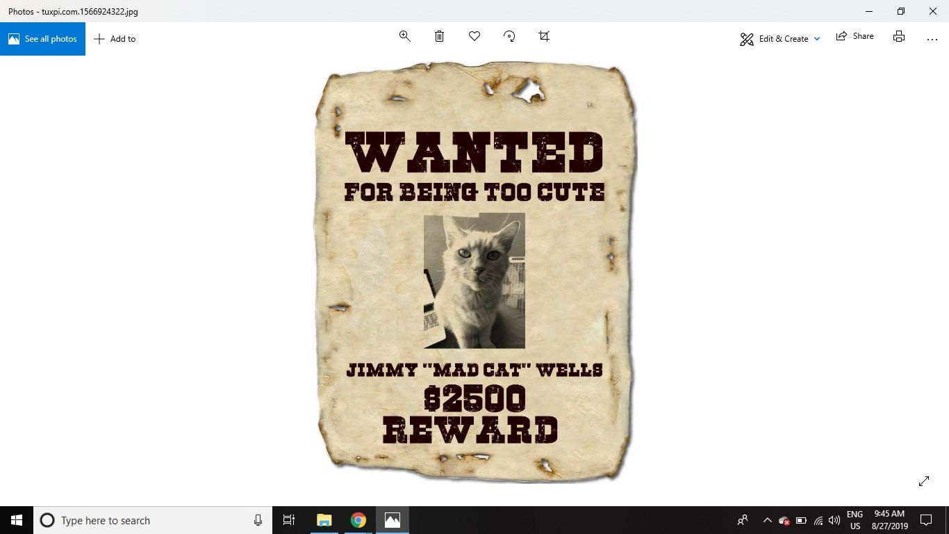 Make A Wanted Poster With Free Fonts And Tutorials throughout Make Your Own Wanted Sign