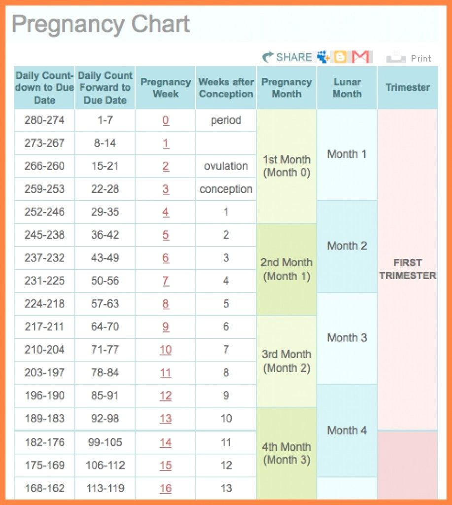 Pin On Printable Free Calendar Templates pertaining to Printable Pregnancy Calendar