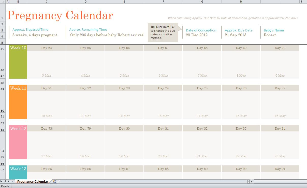 Pregnancy Calendar pertaining to Printable Pregnancy Calendar