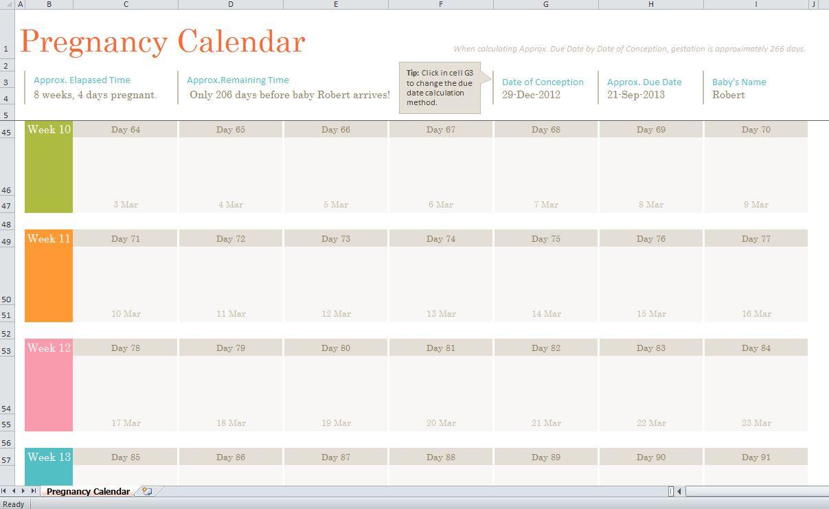 Pregnancy Calendar pertaining to Printable Pregnancy Calendar