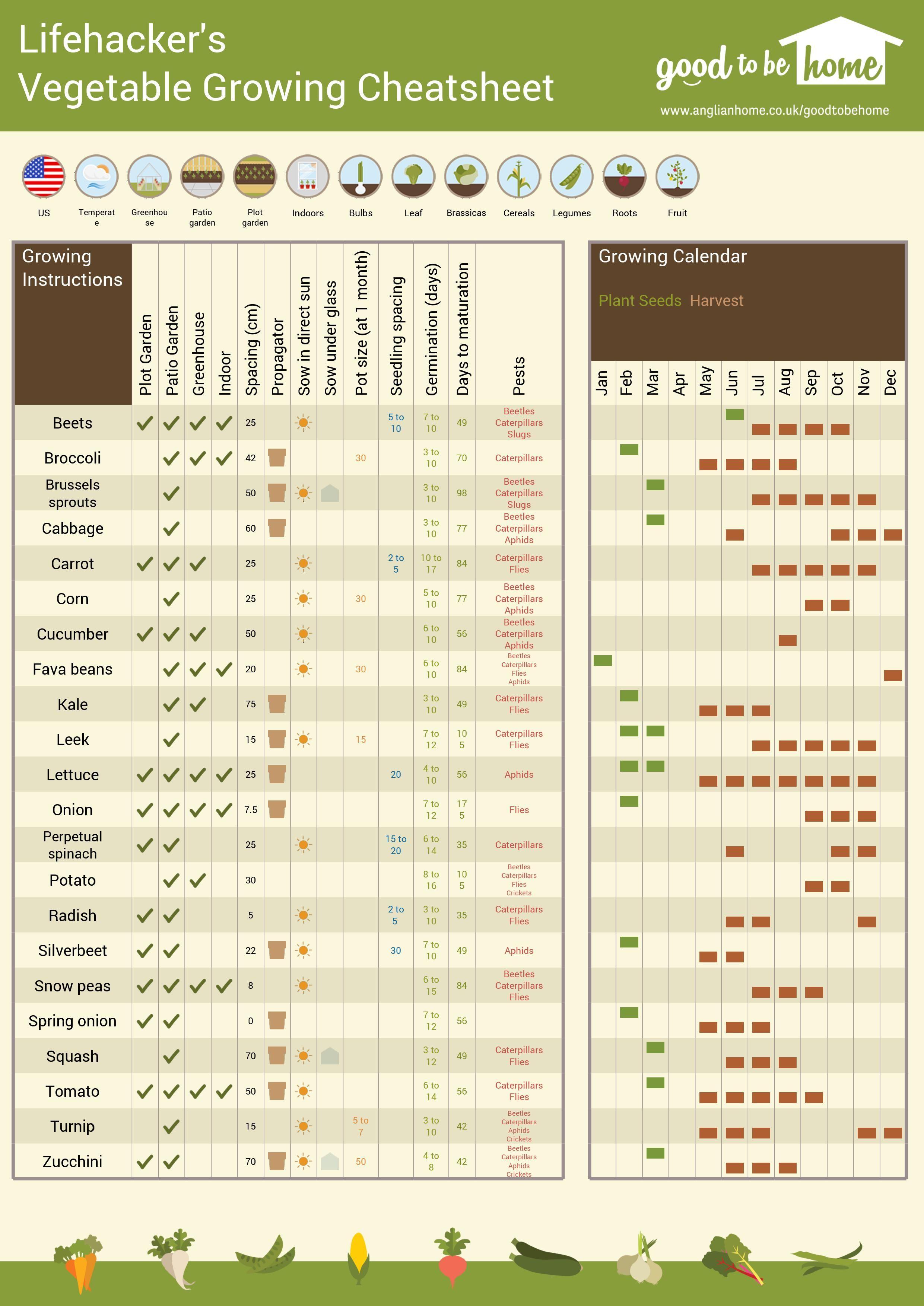 Vegetable Growing Chart  Bobi.karikaturize intended for Allotment Planting Calendar