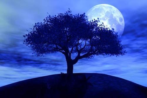 Pin By Brenda Glasier On Many Moons Ago . . . | Moonlight intended for Isha Foundation Lunar Calendar