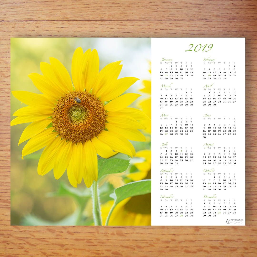 Pin On Calendars And Planners with At A Glance Wall Calendar Holder