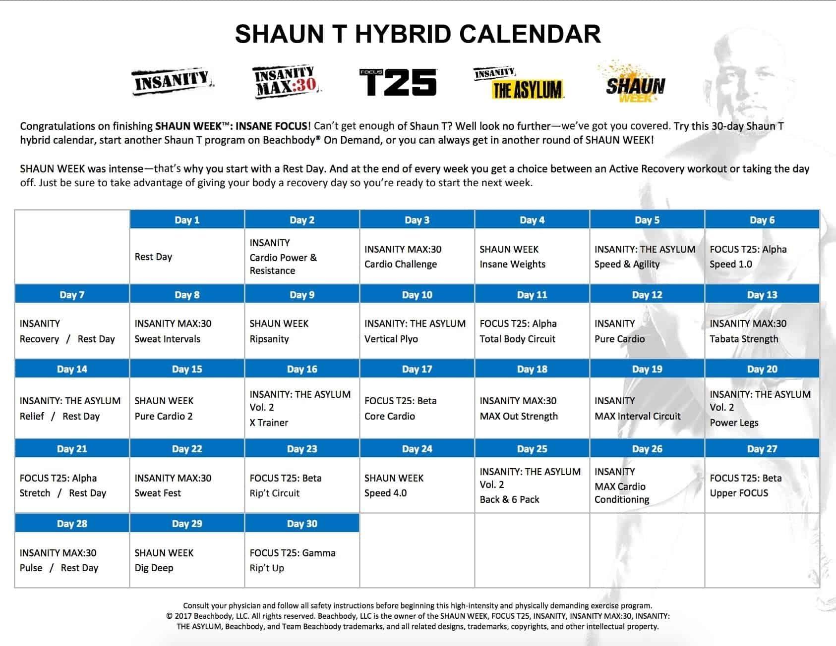 Shaun T Week Calendar In 2020 | Shaun Week, Shaun T Week with Shaun T Hybrid Calendar