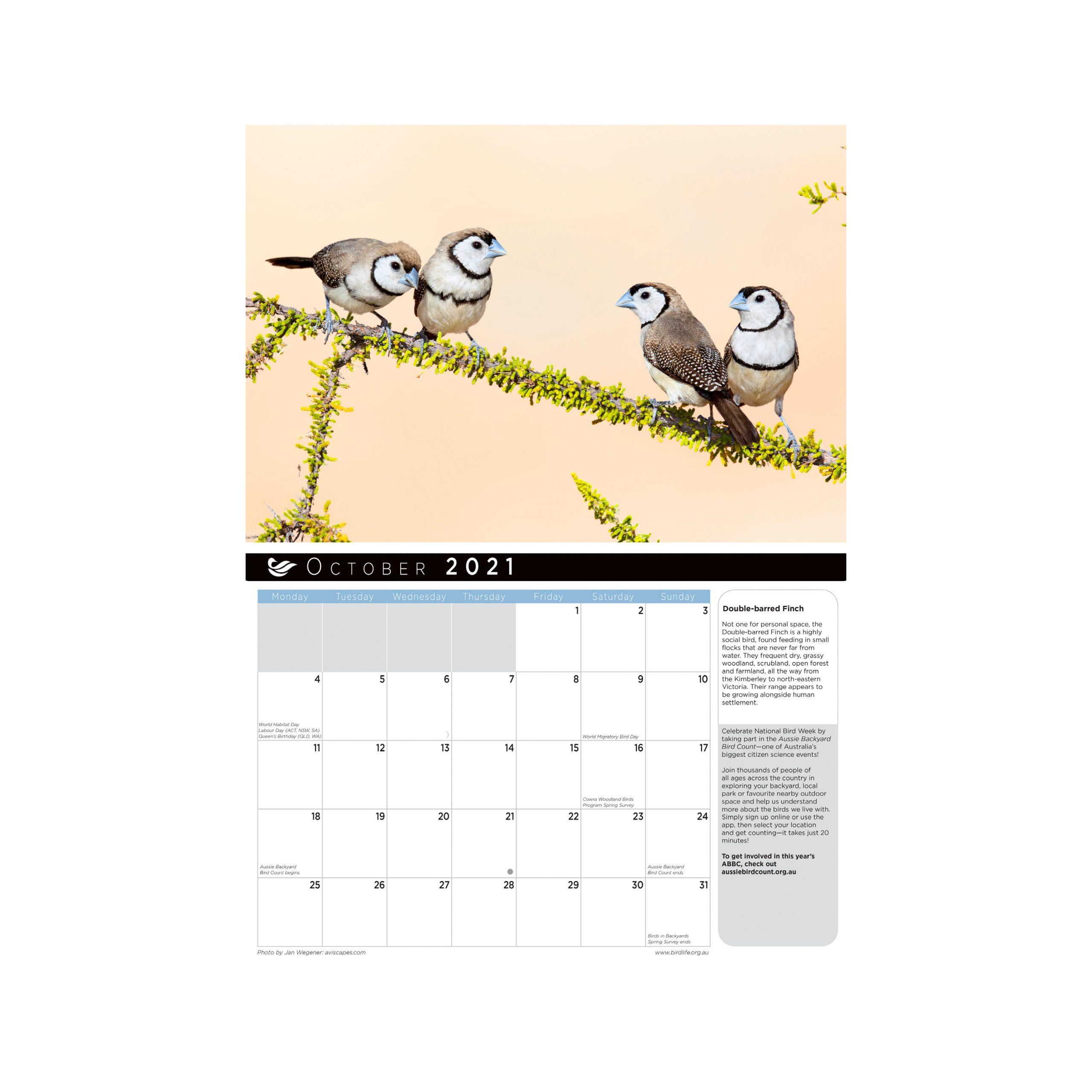 2021 Birds Of A Feather Calendar   Birdlife Australia within Important Awarness Dates 2021 Australia