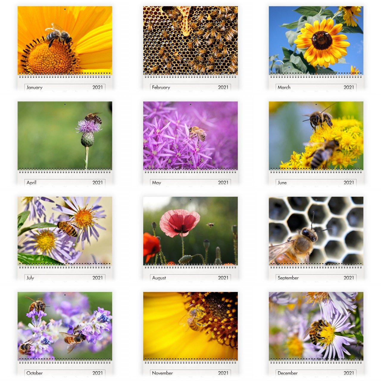 Bee 2021 Calendar pertaining to National Food Calendar 2021