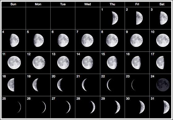 Calendar | Find Calendar intended for Calendar 12 Moon Phases