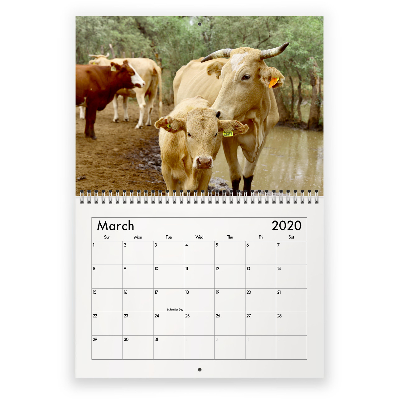 Cow 2021 Calendar with regard to National Food Calendar 2021