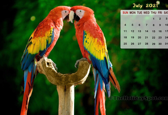 July 2021 Calendar Wallpaper  800X480 in Khmer Calendar 2021 Wallpaper