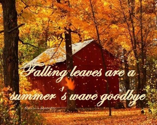 Pin By Christine Baker On Fall | Summer Waves, Waves for Goodbye Summer Hello Fall Wallpaper