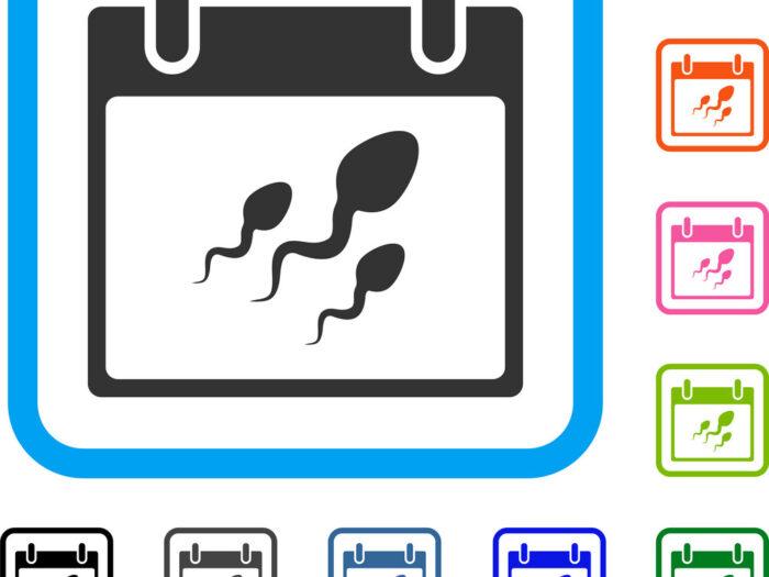 Sperm Calendar Day Framed Icon Royalty Free Vector Image pertaining to Google Calendar Icon Vector