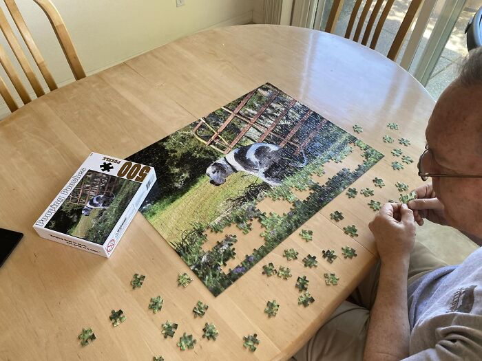 2021 Pooping Dogs Calendar Is Finally Here, And This Year throughout December Calendar 2021 Empire And Puzzles