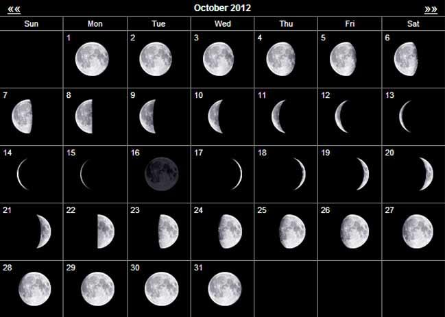 Calender  Hillbilly Huntin inside Manok Panabong Moon Calendar Sabong