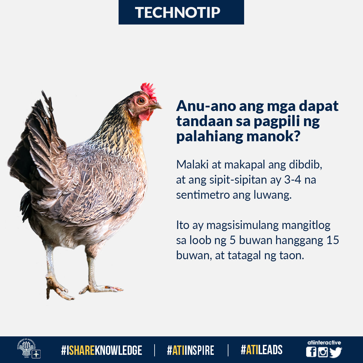 Elearning For Agriculture And Fisheries | Agricultural with Kaliskis Ng Manok Swerte
