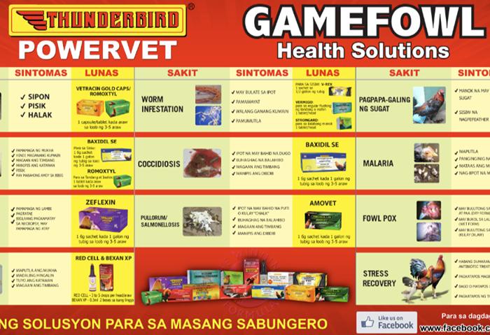 Sabong   Cockfight: Gamefowl Health Solutions regarding Calendar Ng Manok Panabong 2021